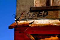 Seed Clarksdale,MS